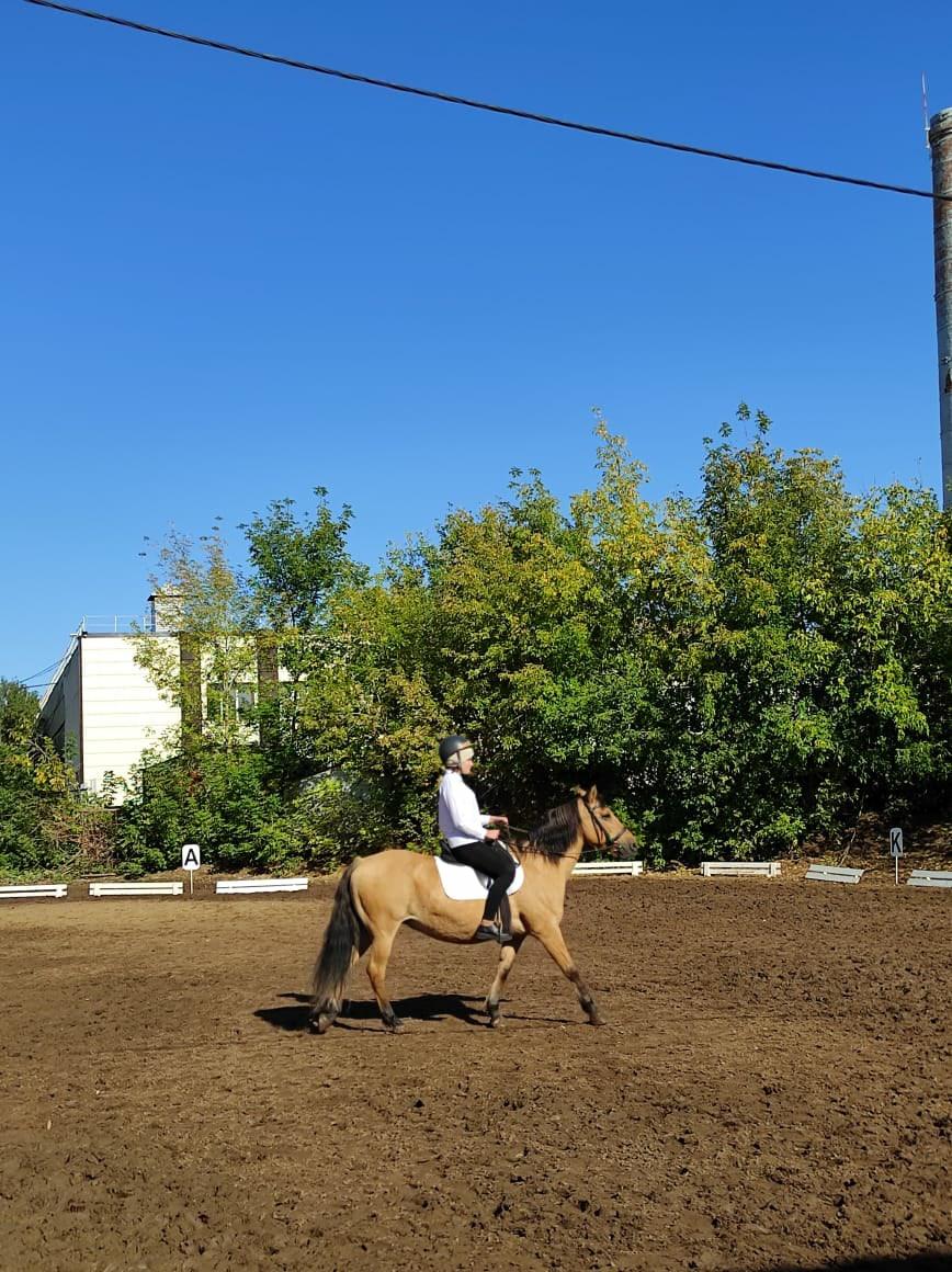 Открытый Чемпионат и Первенство Республики Башкортостан по конному спорту ЛИН