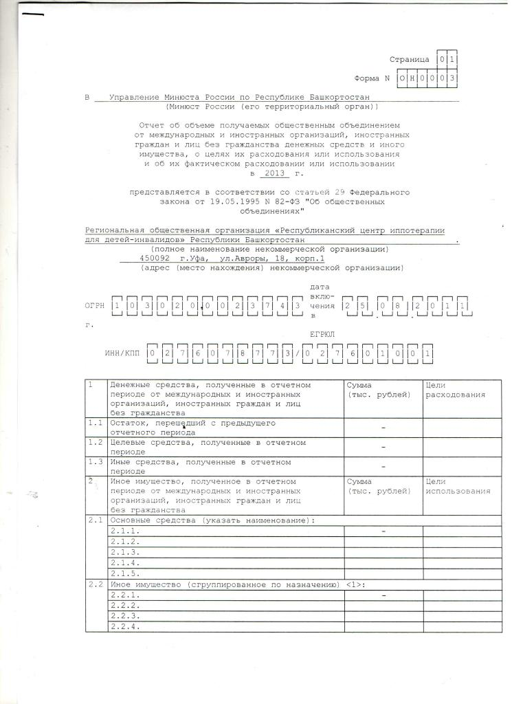 Годовой отчет 2013 год, 1 лист.jpg